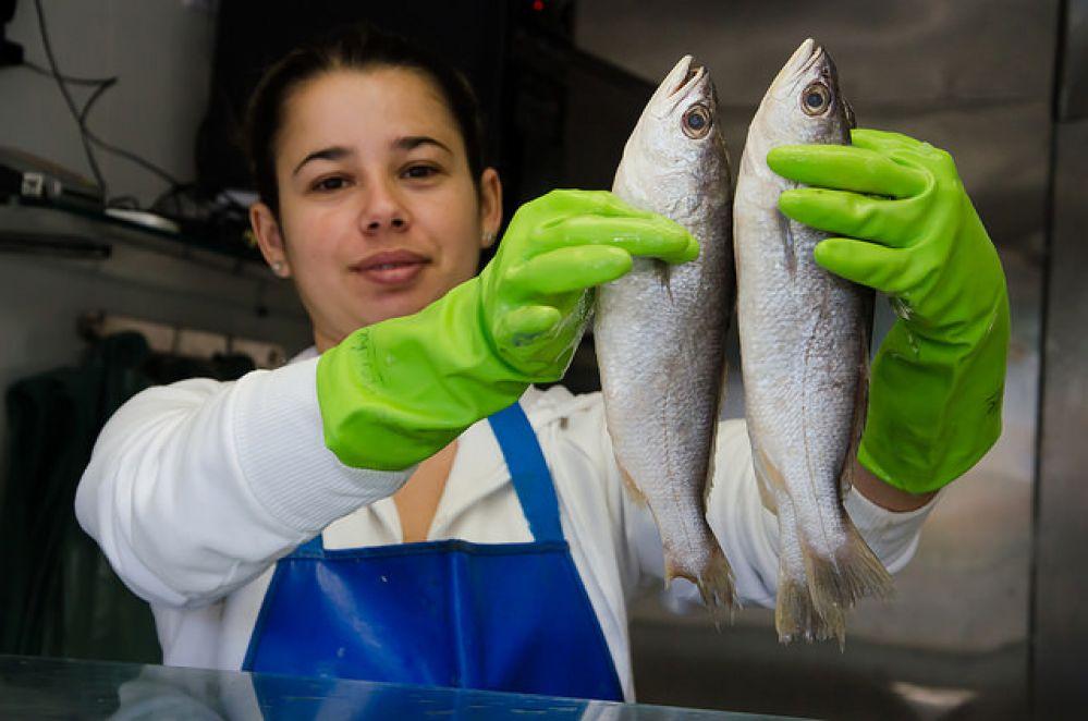 Quarta-feira é dia do Peixe