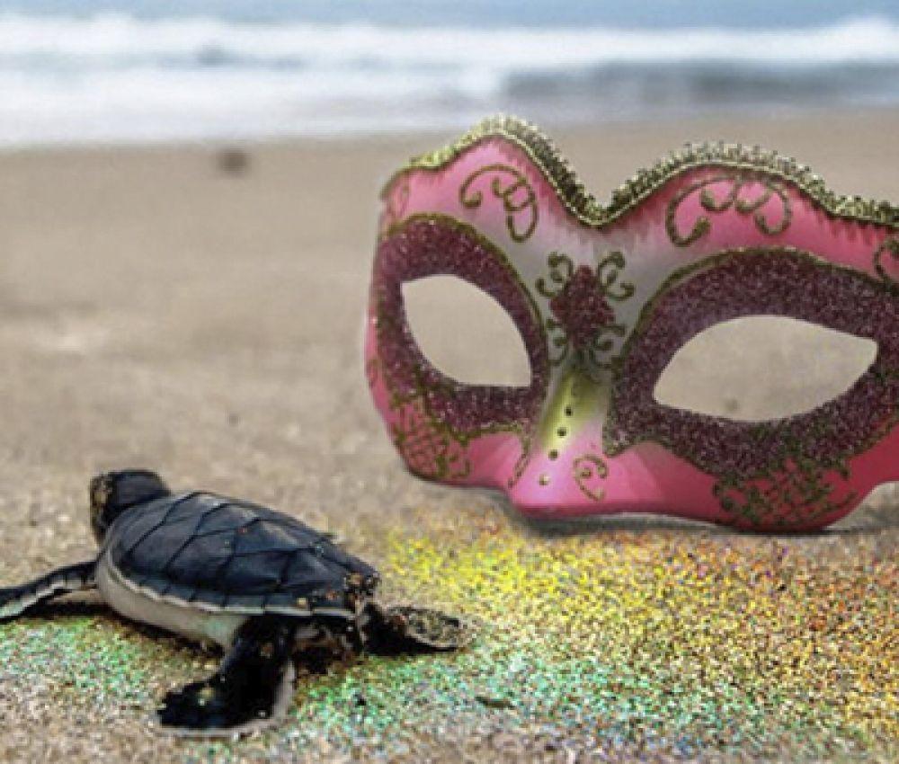 Alerta para danos ambientais pelo uso de glitter
