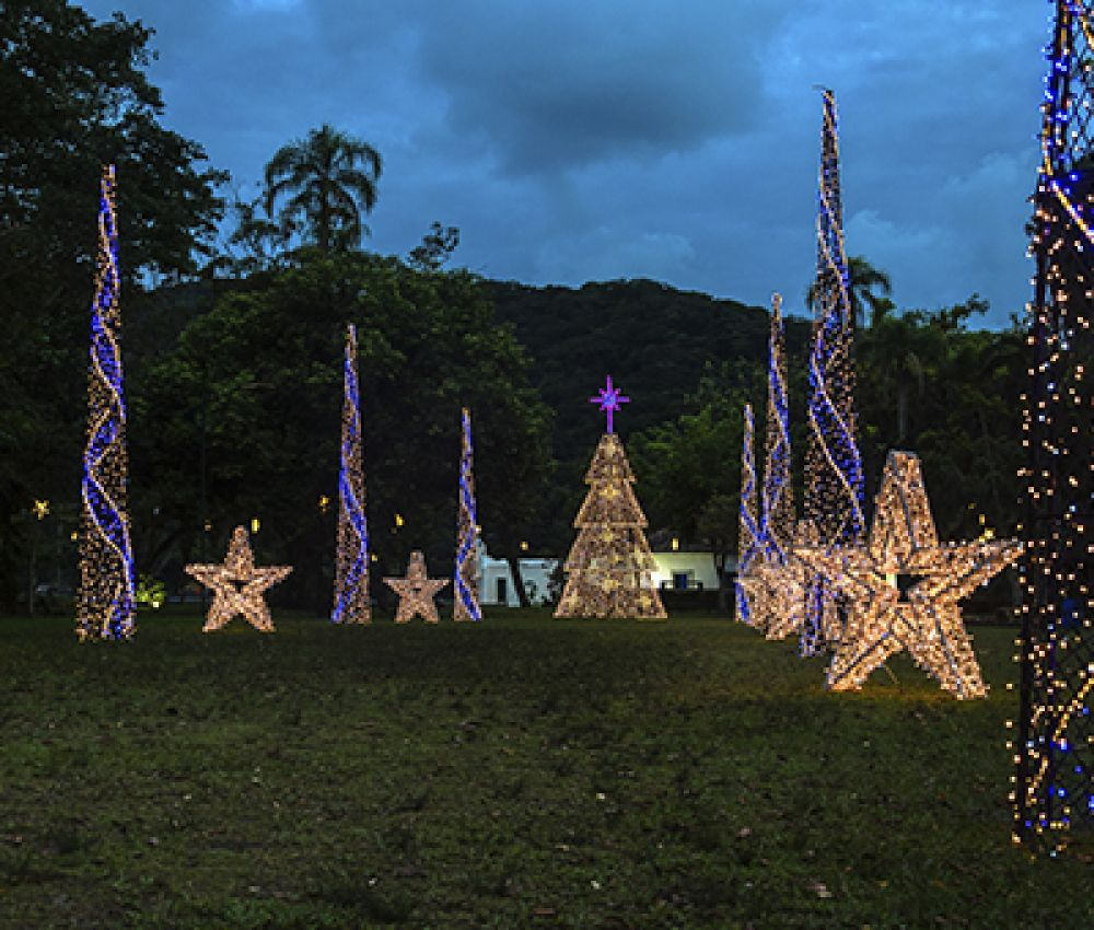 Cidade brilha à luzes de natal